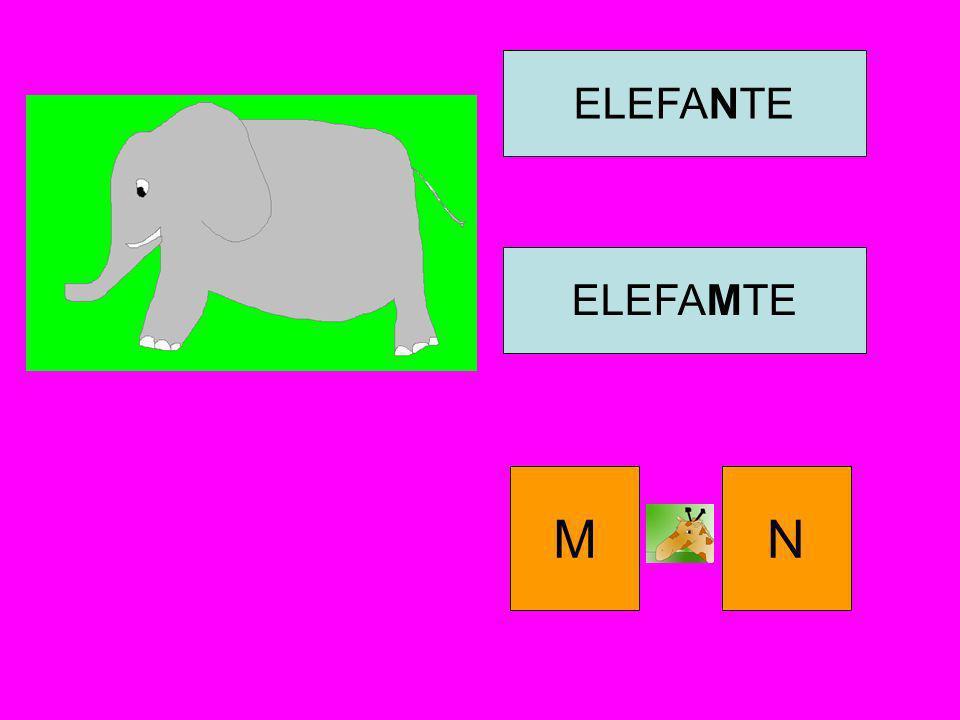 ELEFANTE ELEFAMTE M N