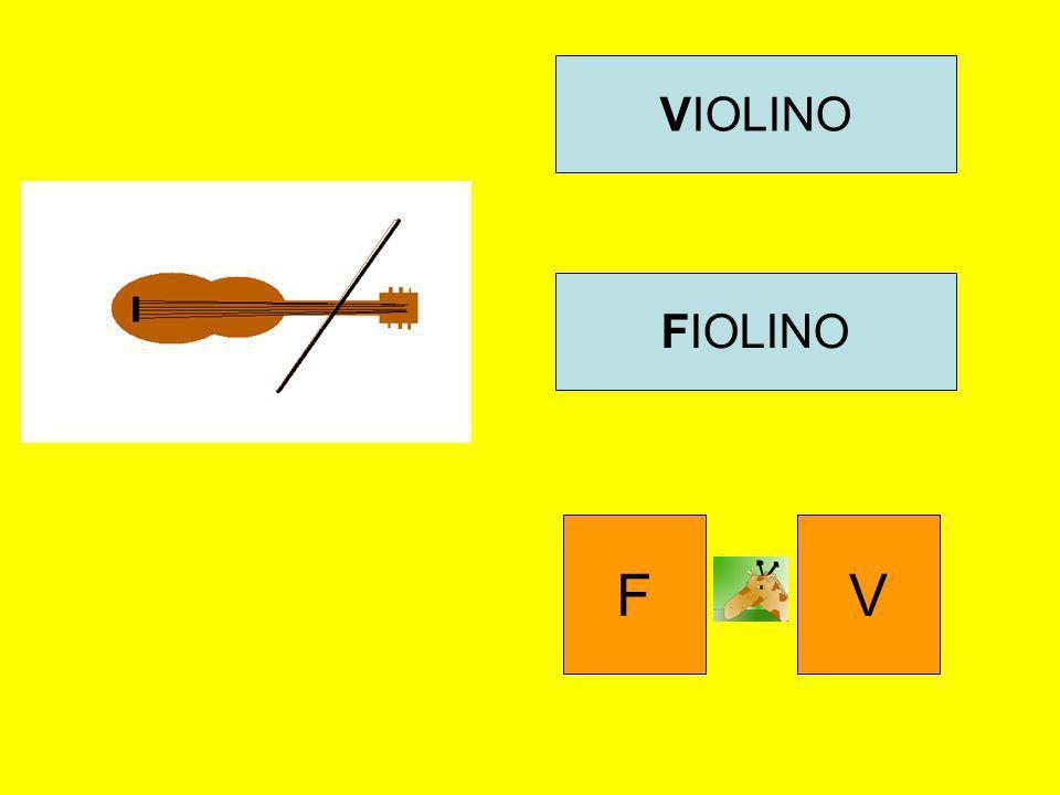 VIOLINO FIOLINO F V