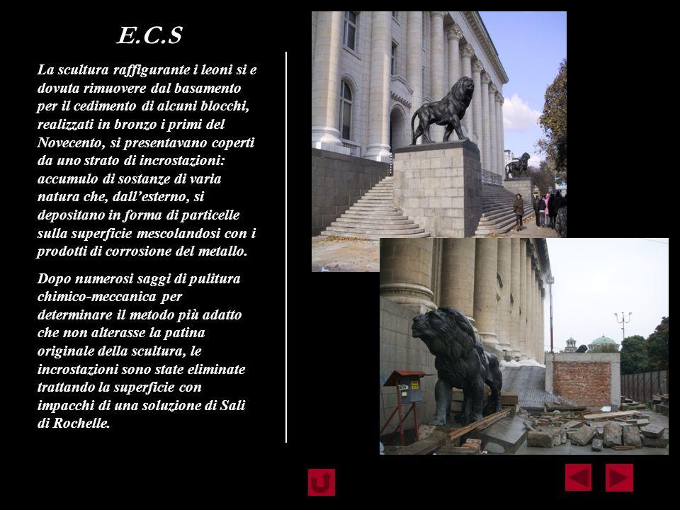 E.C.S