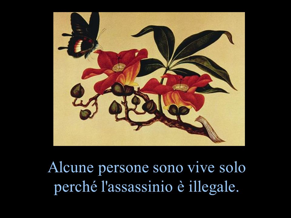 Alcune persone sono vive solo perché l assassinio è illegale.