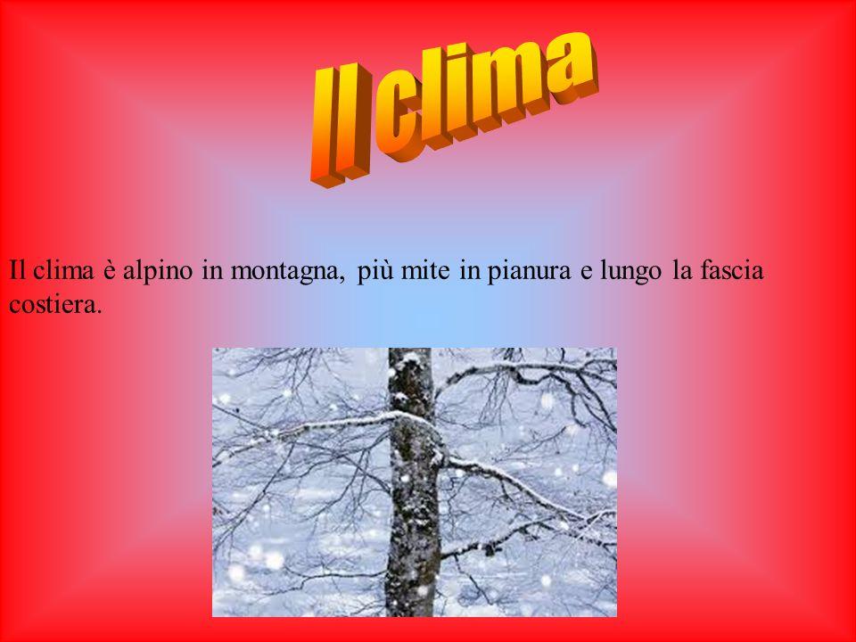 Il clima Il clima è alpino in montagna, più mite in pianura e lungo la fascia costiera.