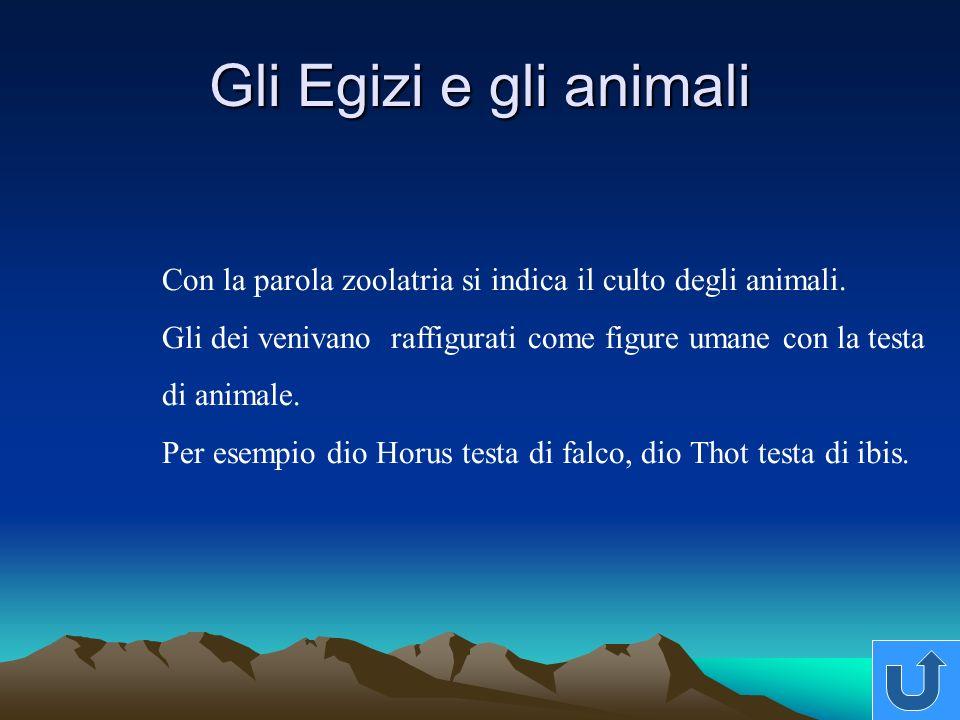Gli Egizi e gli animali Con la parola zoolatria si indica il culto degli animali. Gli dei venivano raffigurati come figure umane con la testa.