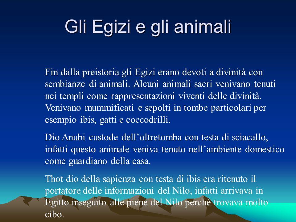 Gli Egizi e gli animali