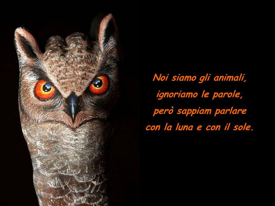 Noi siamo gli animali, ignoriamo le parole, però sappiam parlare con la luna e con il sole.