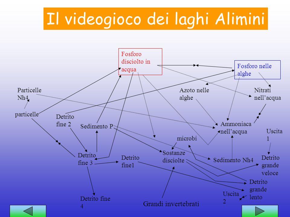 Il videogioco dei laghi Alimini