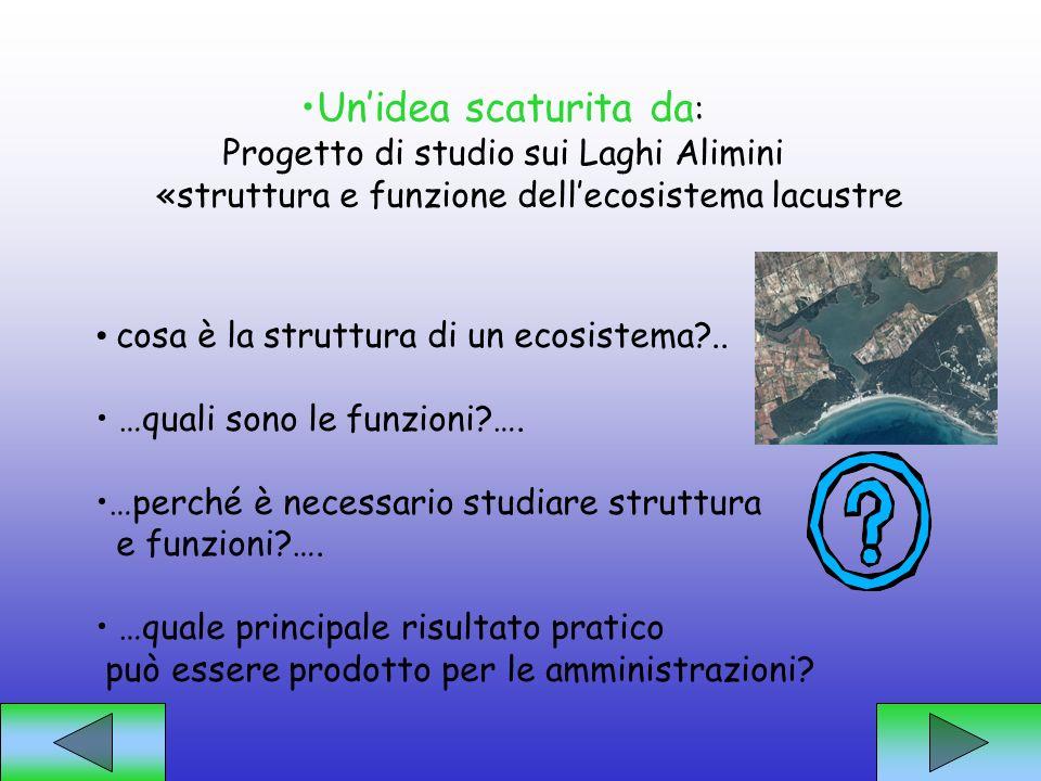 Un'idea scaturita da: Progetto di studio sui Laghi Alimini
