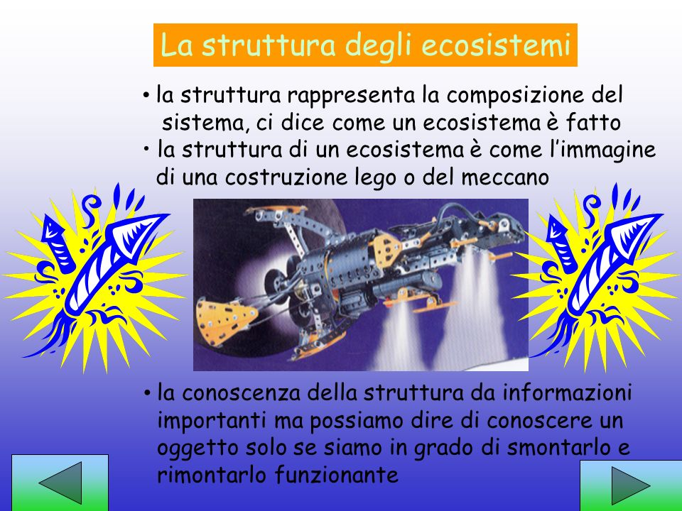 La struttura degli ecosistemi