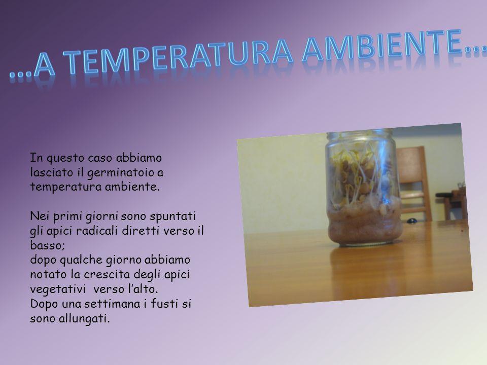 …a temperatura ambiente…