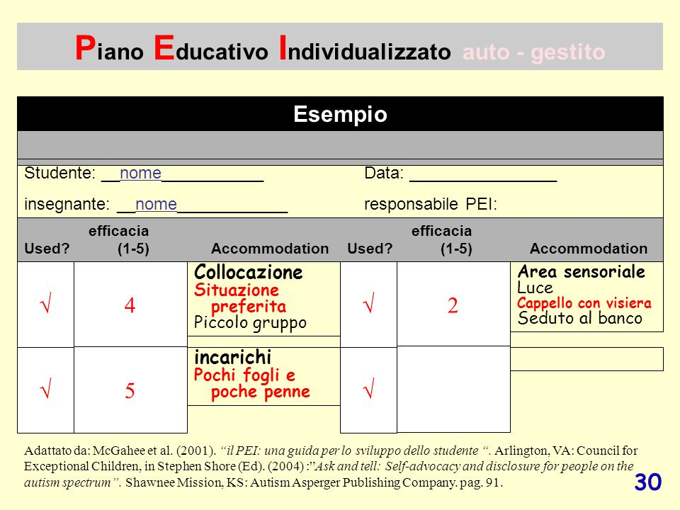 Piano Educativo Individualizzato auto - gestito