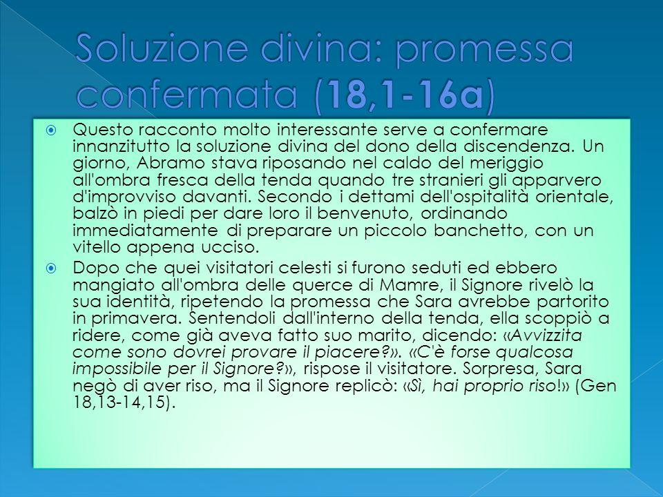 Soluzione divina: promessa confermata (18,1-16a)