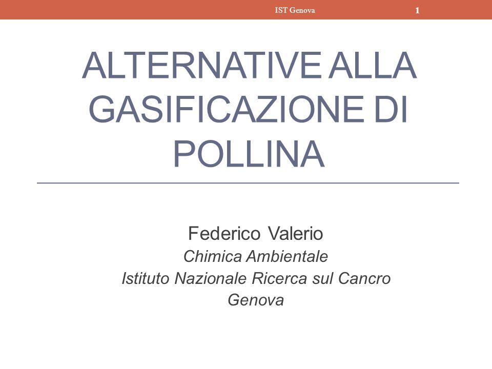 ALTERNATIVE ALLA GASIFICAZIONE DI POLLINA
