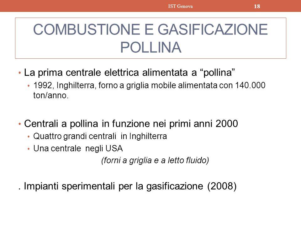 COMBUSTIONE E GASIFICAZIONE POLLINA