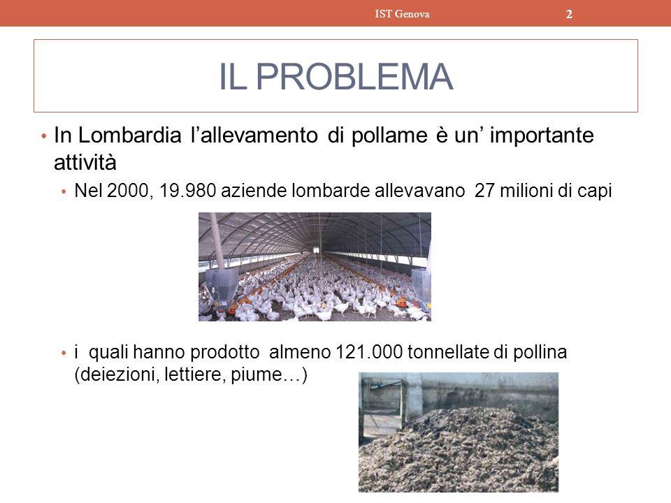 IST Genova IL PROBLEMA. In Lombardia l'allevamento di pollame è un' importante attività.