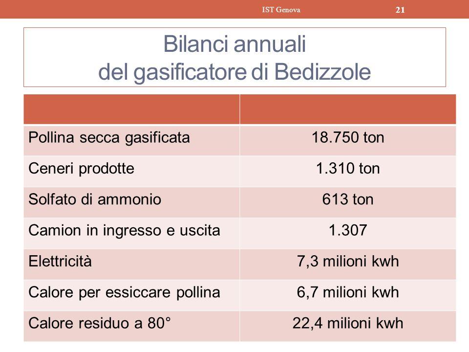 Bilanci annuali del gasificatore di Bedizzole