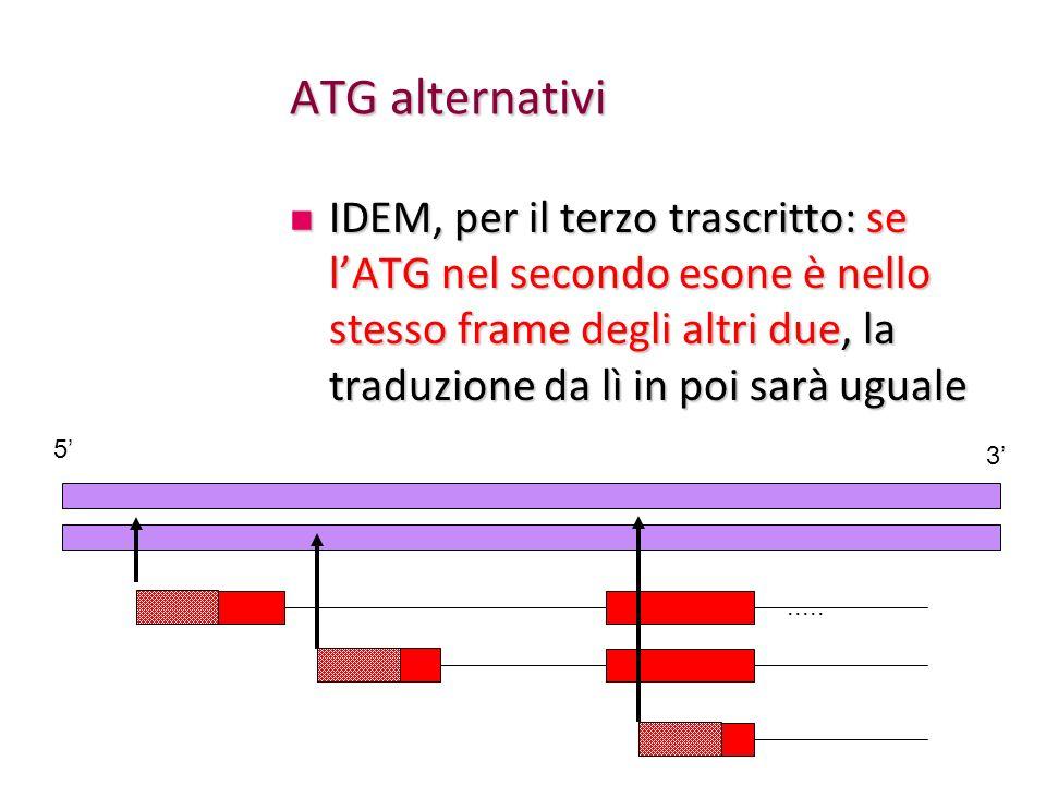 ATG alternativi