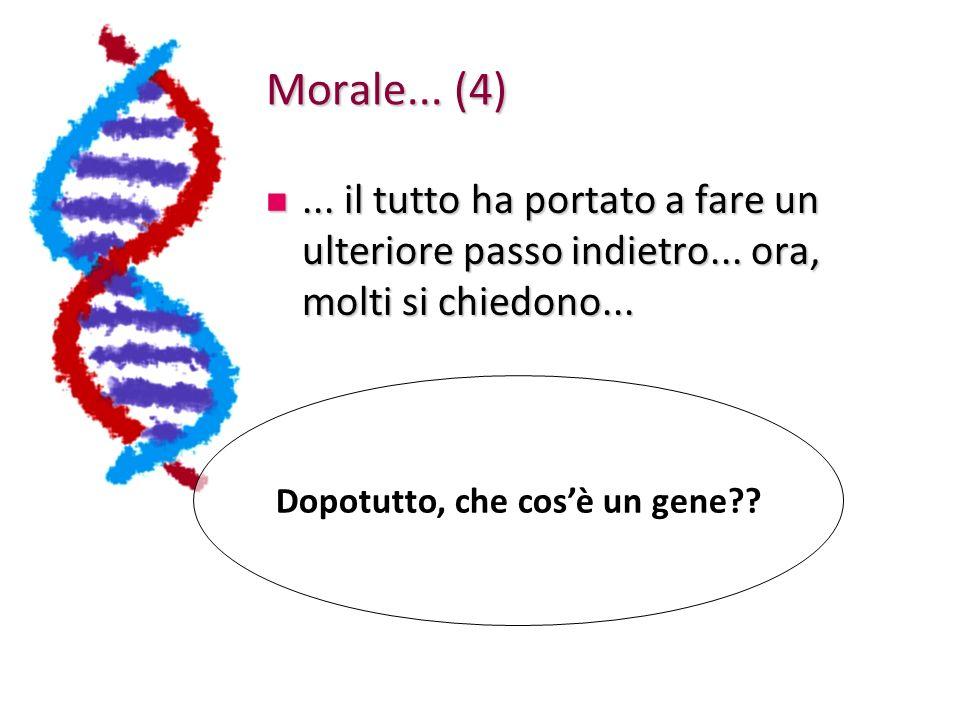 Dopotutto, che cos'è un gene