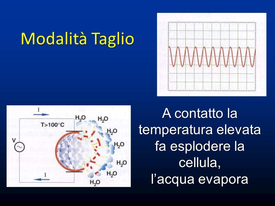 A contatto la temperatura elevata fa esplodere la cellula,