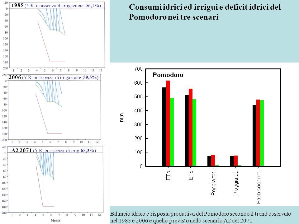 Consumi idrici ed irrigui e deficit idrici del