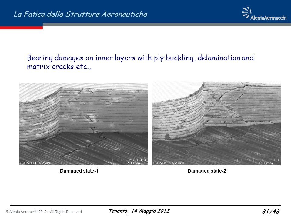 Bearing damages on inner layers with ply buckling, delamination and matrix cracks etc.,