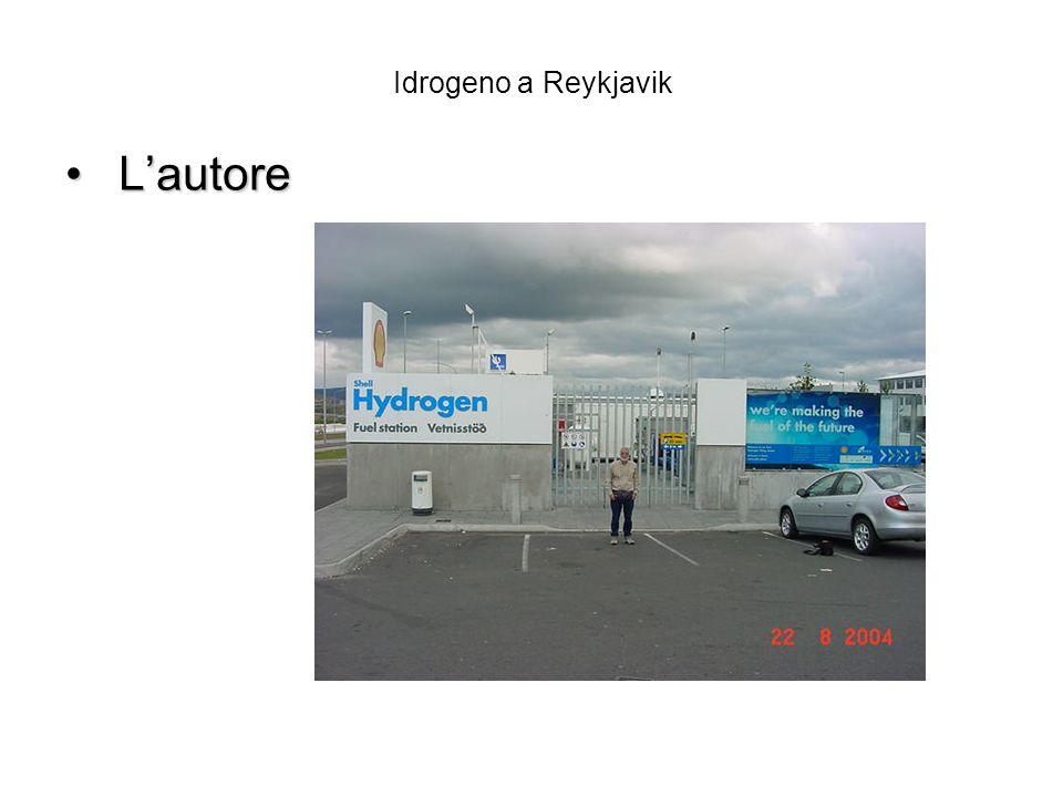 Idrogeno a Reykjavik L'autore