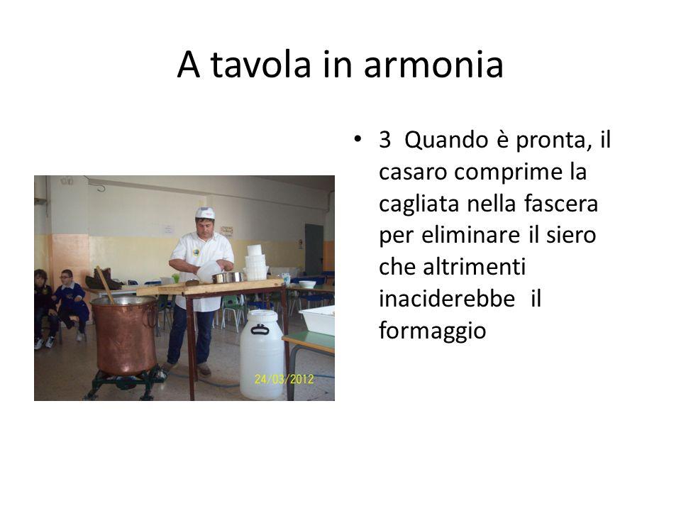 A tavola in armonia 3 Quando è pronta, il casaro comprime la cagliata nella fascera per eliminare il siero che altrimenti inaciderebbe il formaggio.