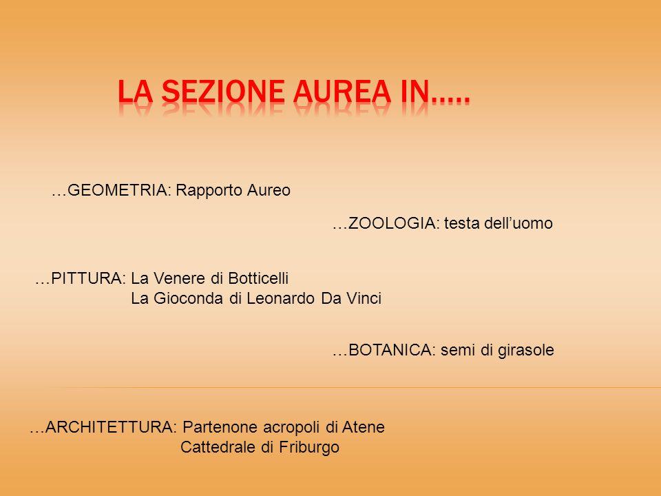 La Sezione Aurea in….. …GEOMETRIA: Rapporto Aureo