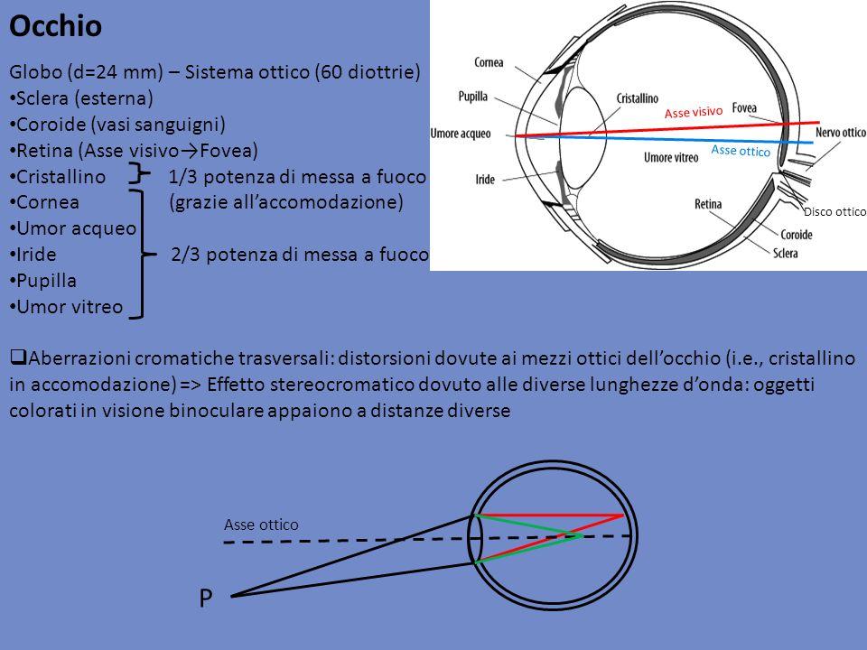 Occhio P Globo (d=24 mm) – Sistema ottico (60 diottrie)