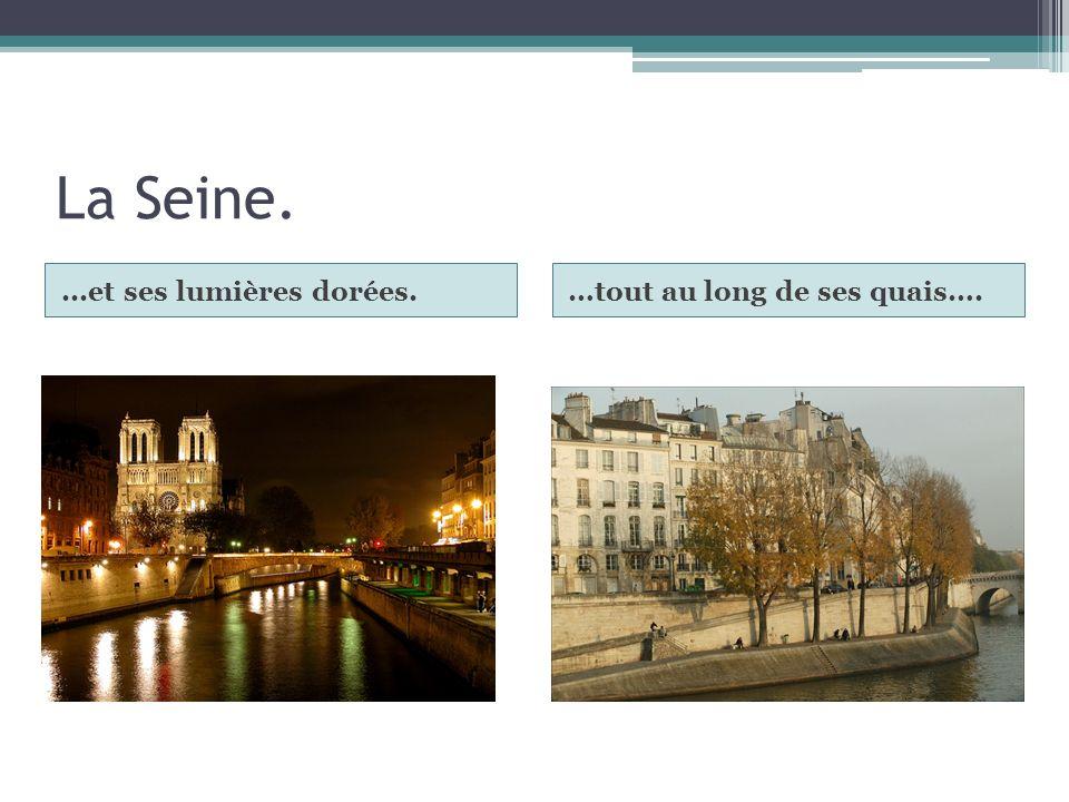 La Seine. ...et ses lumières dorées. …tout au long de ses quais….