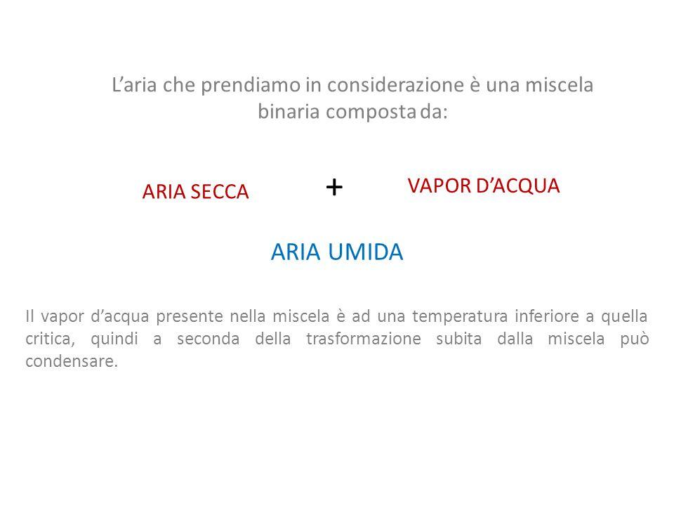 L'aria che prendiamo in considerazione è una miscela binaria composta da:
