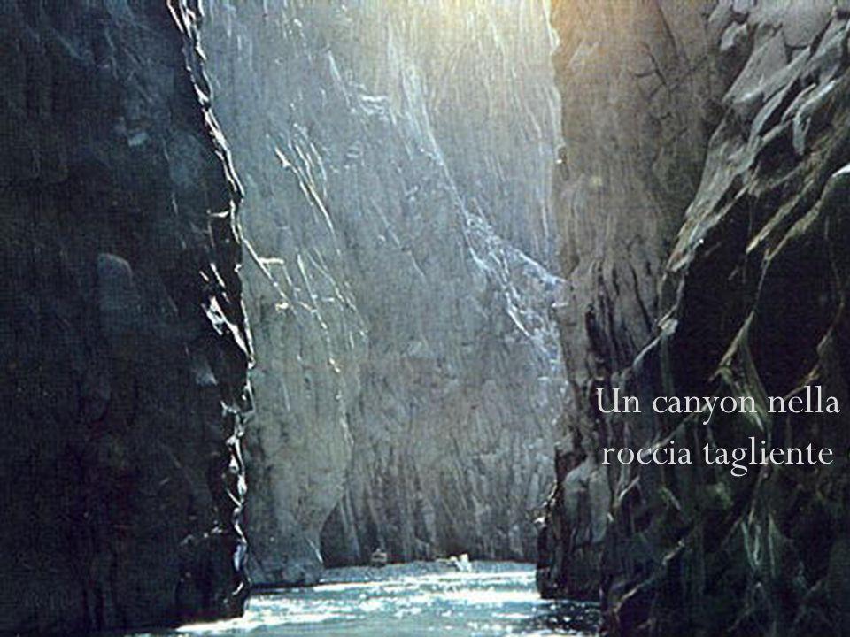 Un canyon nella roccia tagliente