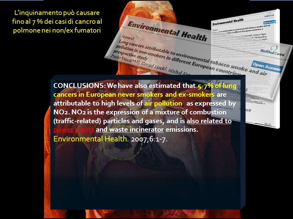 Environmental Health. 2007;6:1-7.