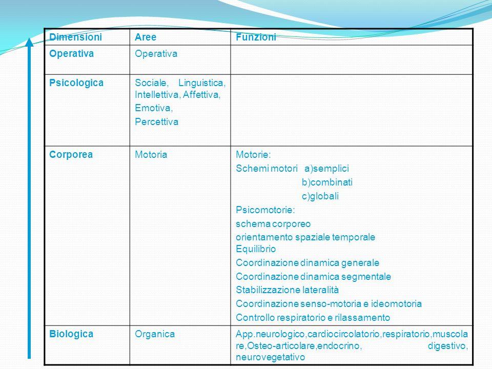 Dimensioni Aree. Funzioni. Operativa. Psicologica. Sociale, Linguistica, Intellettiva, Affettiva,