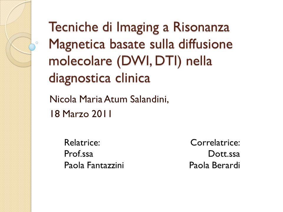 Nicola Maria Atum Salandini, 18 Marzo 2011