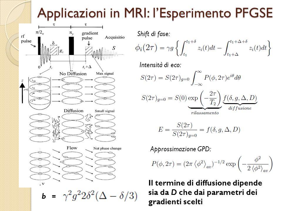 Applicazioni in MRI: l'Esperimento PFGSE