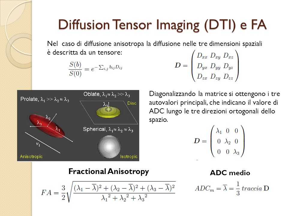 Diffusion Tensor Imaging (DTI) e FA
