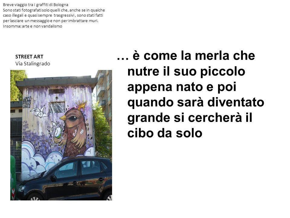 Breve viaggio tra i graffiti di Bologna Sono stati fotografati solo quelli che, anche se in qualche caso illegali e quasi sempre trasgressivi , sono stati fatti per lasciare un messaggio e non per imbrattare muri. Insomma: arte e non vandalismo