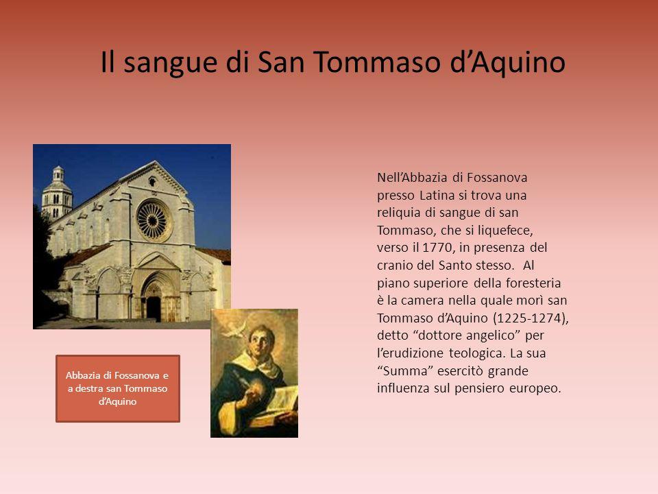 Il sangue di San Tommaso d'Aquino