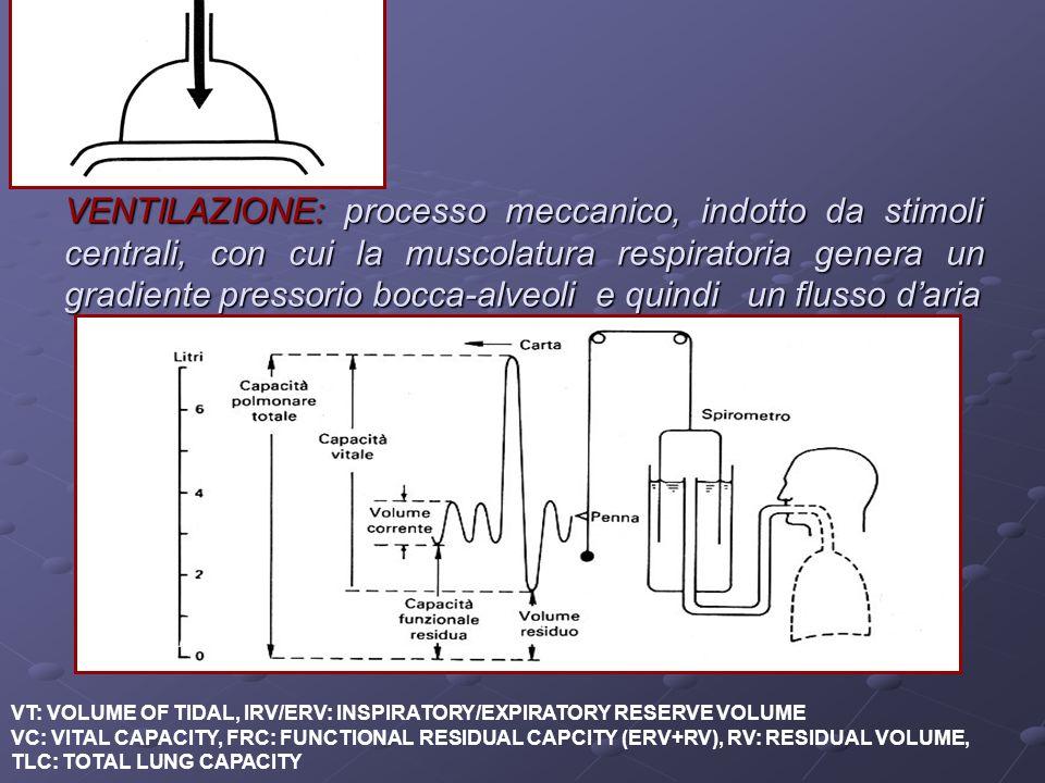 VENTILAZIONE: processo meccanico, indotto da stimoli centrali, con cui la muscolatura respiratoria genera un gradiente pressorio bocca-alveoli e quindi un flusso d'aria