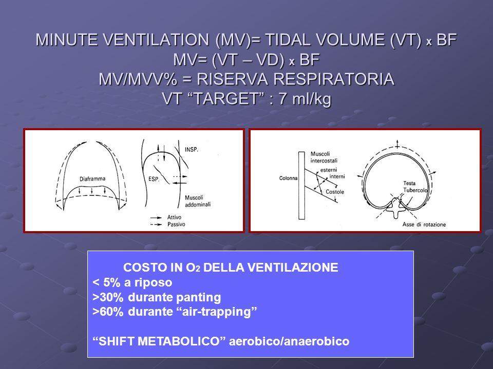 MINUTE VENTILATION (MV)= TIDAL VOLUME (VT) X BF MV= (VT – VD) X BF MV/MVV% = RISERVA RESPIRATORIA VT TARGET : 7 ml/kg
