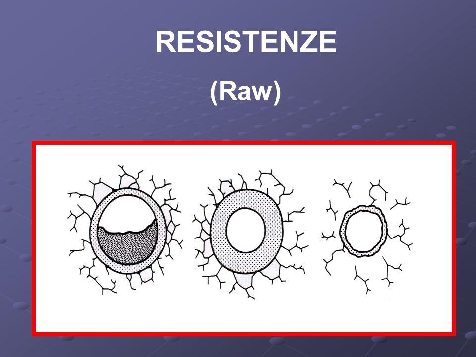 RESISTENZE (Raw)