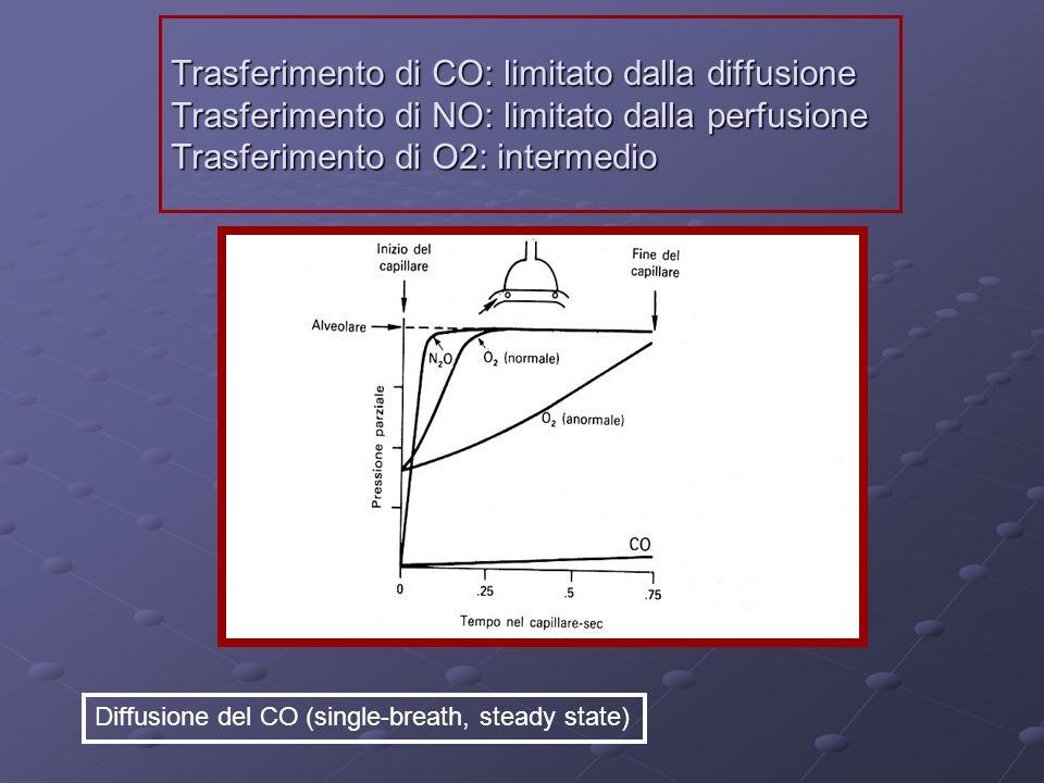 Trasferimento di CO: limitato dalla diffusione Trasferimento di NO: limitato dalla perfusione Trasferimento di O2: intermedio