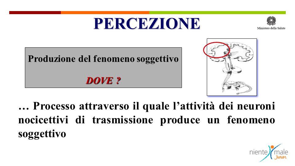 PERCEZIONE Produzione del fenomeno soggettivo. DOVE