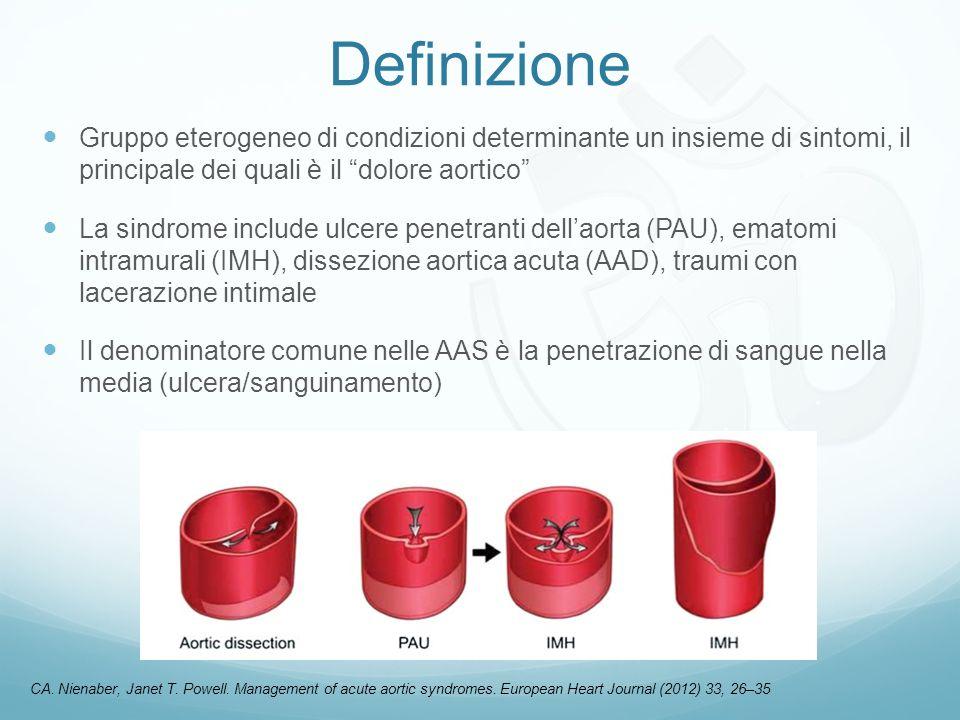 Definizione Gruppo eterogeneo di condizioni determinante un insieme di sintomi, il principale dei quali è il dolore aortico