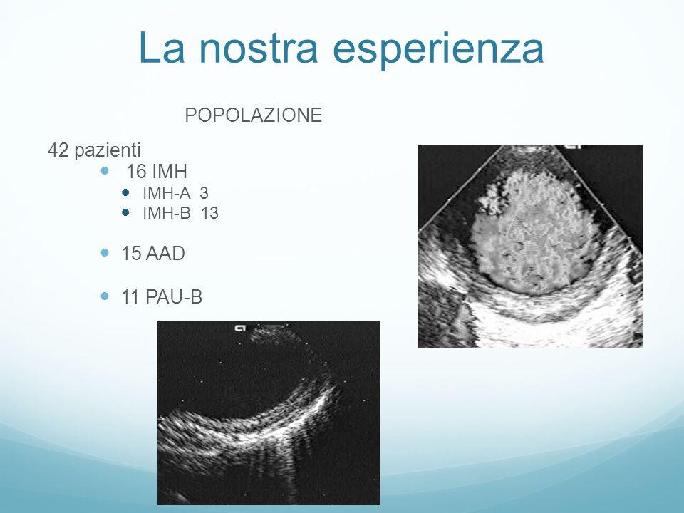 La nostra esperienza POPOLAZIONE 42 pazienti 16 IMH 15 AAD 11 PAU-B