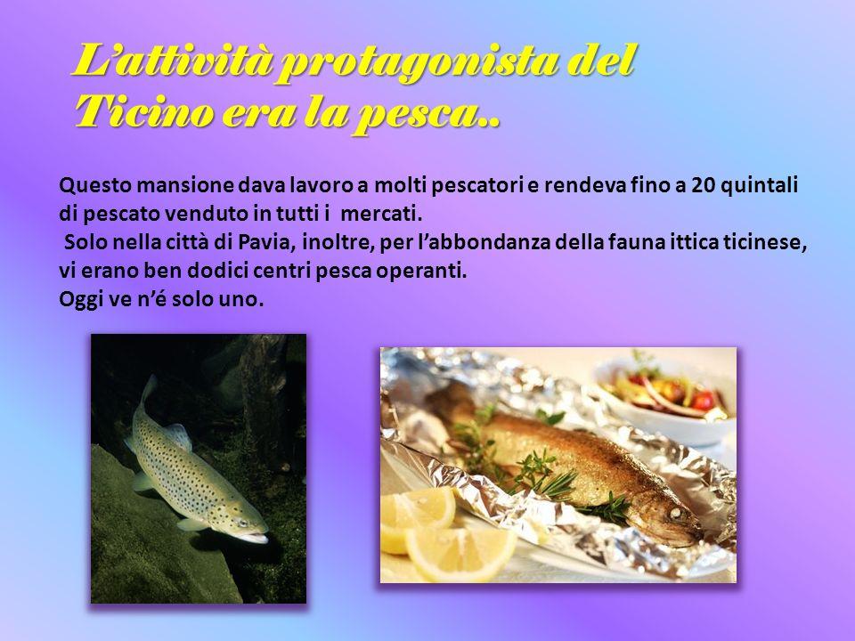 L'attività protagonista del Ticino era la pesca..