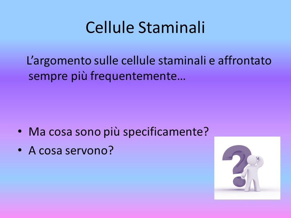 Cellule Staminali L'argomento sulle cellule staminali e affrontato sempre più frequentemente… Ma cosa sono più specificamente