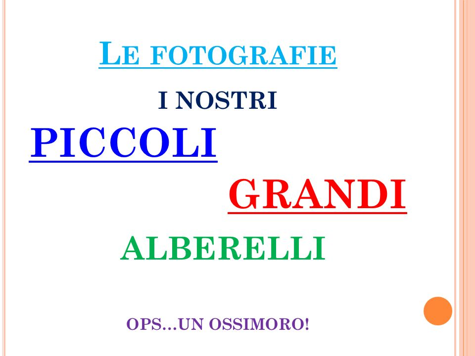 Le fotografie I NOSTRI PICCOLI GRANDI ALBERELLI OPS…UN OSSIMORO!