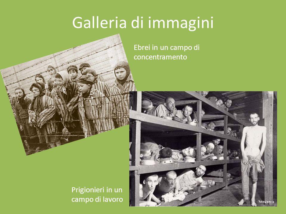 Galleria di immagini Ebrei in un campo di concentramento