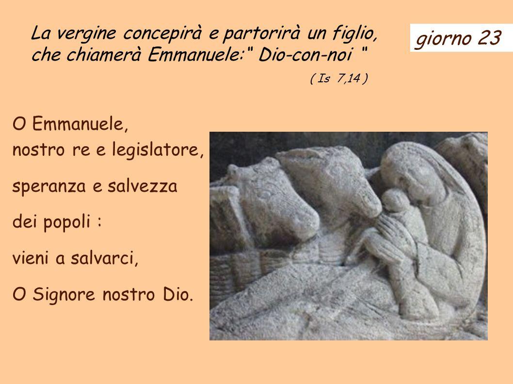La vergine concepirà e partorirà un figlio, che chiamerà Emmanuele: Dio-con-noi
