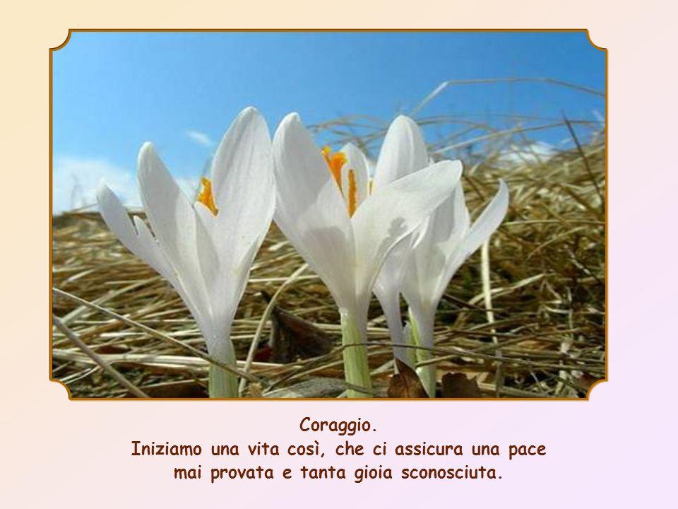 Coraggio. Iniziamo una vita così, che ci assicura una pace mai provata e tanta gioia sconosciuta.